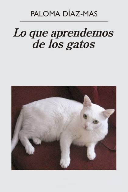 Lo que aprendemos de los gatos Paloma DíazMas » Pangea Ebook